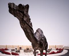 Profile Image - Mohammed El-Kamali